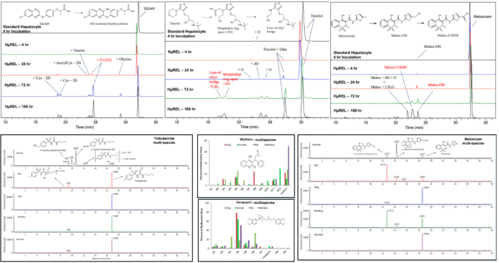 Metabolite-ID-Image-2